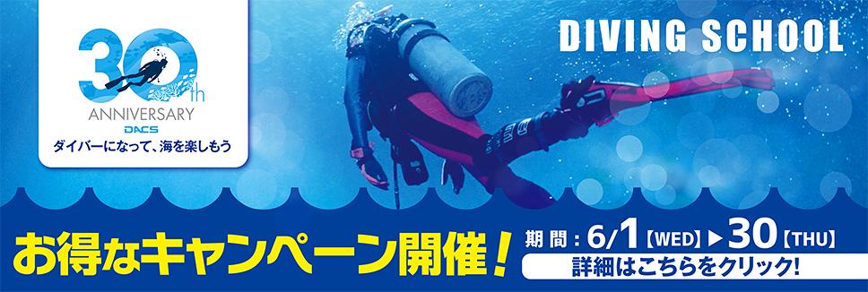 今年は、海を楽しもう!DACS30周年記念 ダイビングスクールキャンペーン実施中!